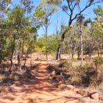 outback undara