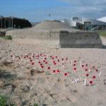 JBC-poppys-in-the-sand